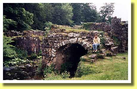 ファウンテンズ修道院の画像 p1_7
