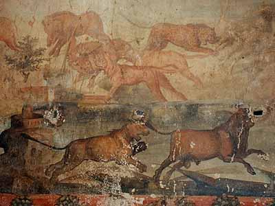 お邸の壁画 ポンペイの出土品とナポリ国立考古学博物館 旅行記「カンパーニャとローマ... イタリ
